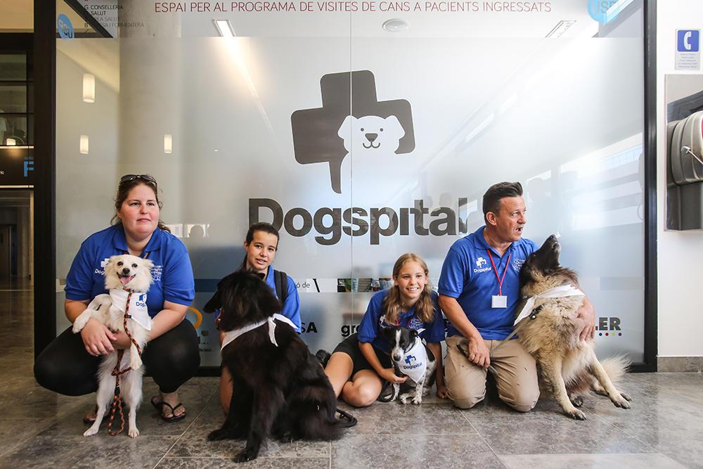 ¿Recibir visitas hospitalarias de nuestros perros? ¡Es posible!