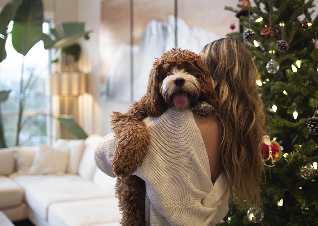 Estas fiestas navideñas, mejor sin pirotecnia