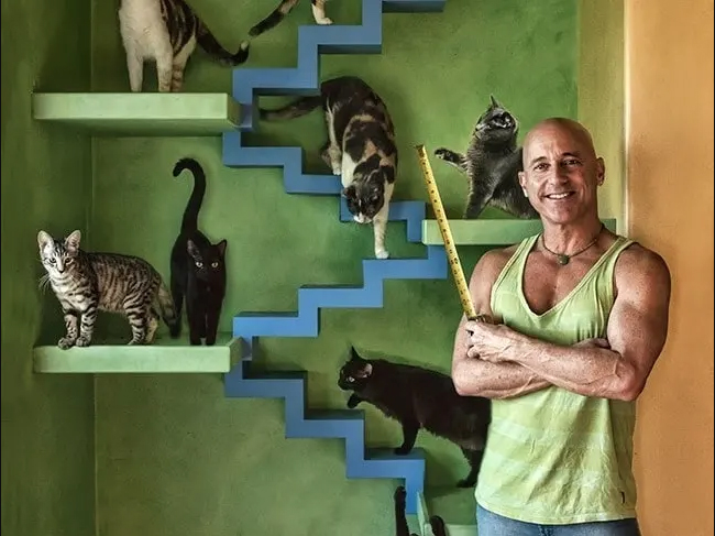 Un hombre con 22 gatos convierte su casa en el Paraíso gatuno