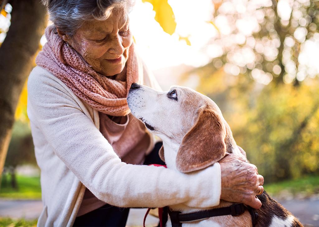 Cuando el vínculo entre animales y personas cambia vidas