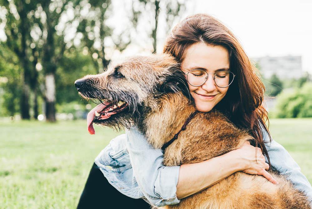 Patología prostática en perros, ¿sabes qué signos pueden indicarnos enfermedad?