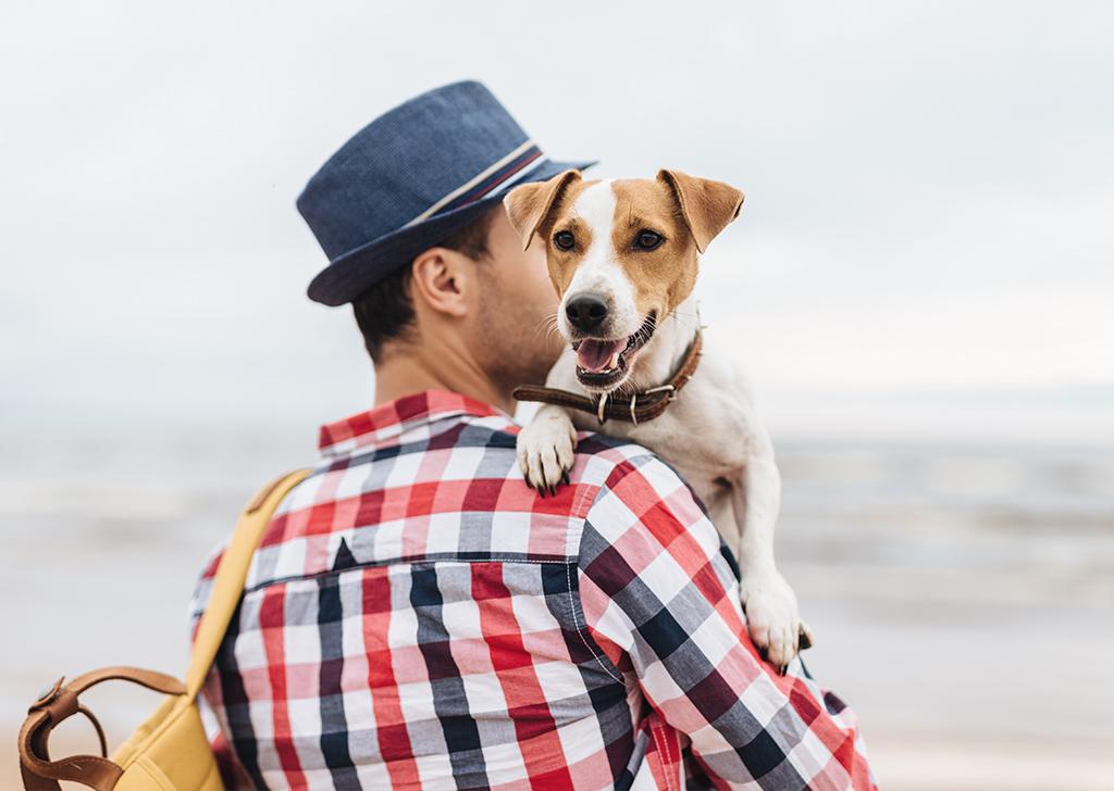 6 cosas que nadie te dice sobre tener perro