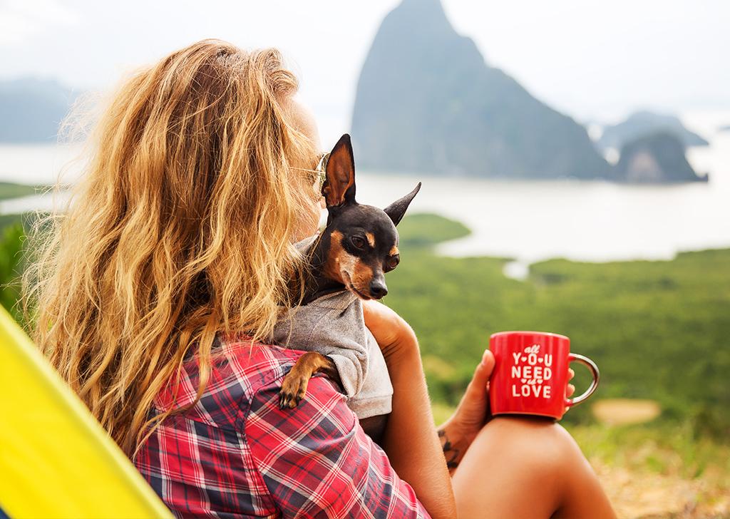 Llegan las vacaciones, ¿qué debemos tener en cuenta si somos padres perrunos o gatunos?