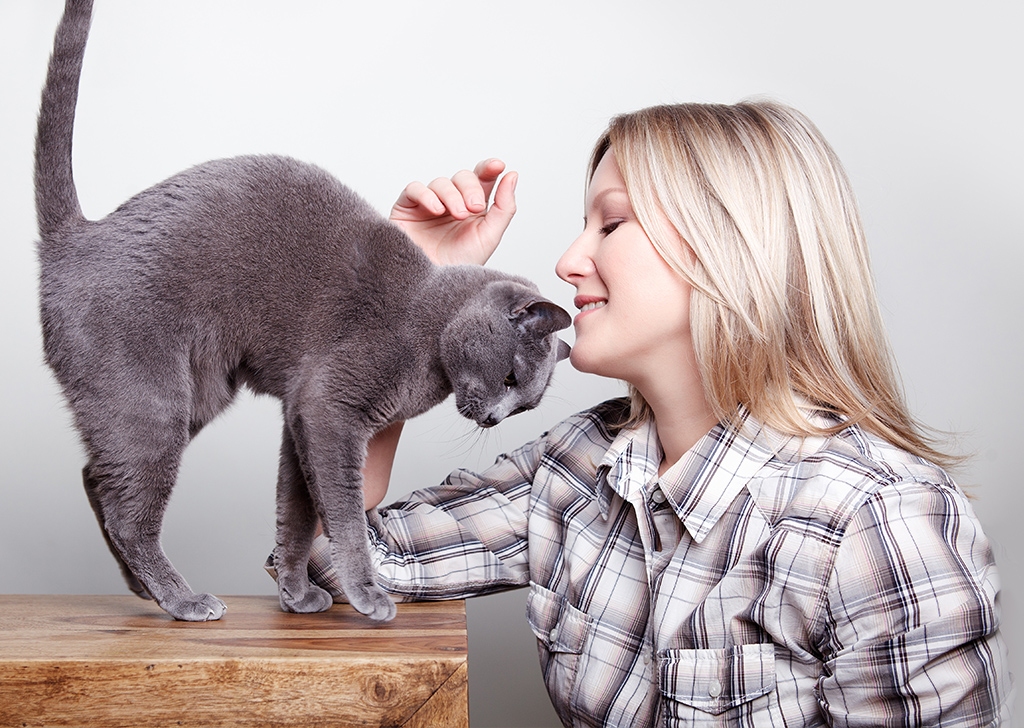 ¿Entiendes a tu gato cuando te habla?
