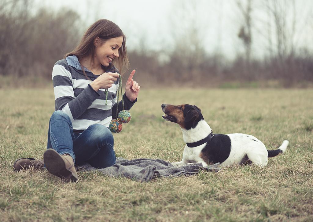 ¿Beneficios de compartir la vida con un perro? ¡Muchos!