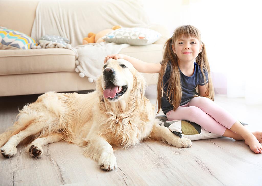 8 razones por las que ser casa de acogida