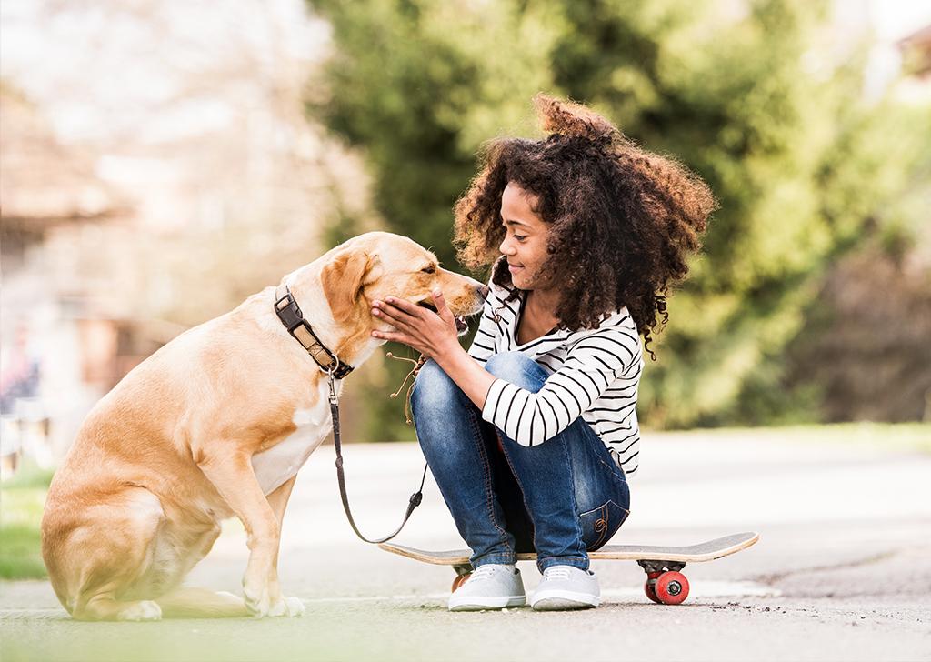 4 puntos fundamentales a la hora de acercarse a un perro