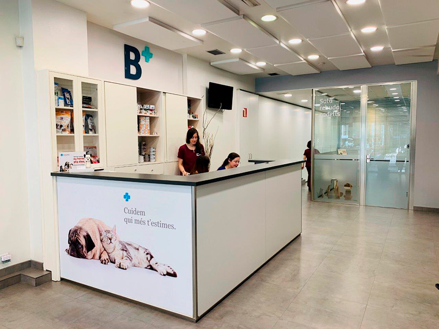 BalmesVet Veterinaris Hospital 24h