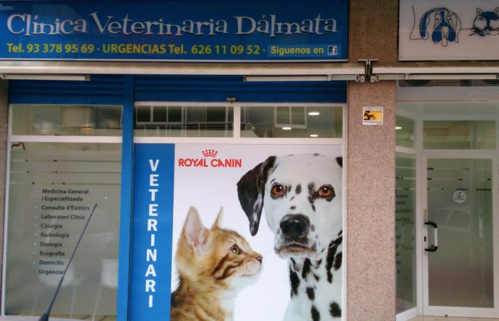 Clínica Veterinaria Dálmata