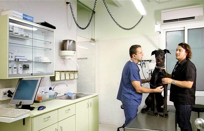 Clínica Veterinària Sant Gervasi